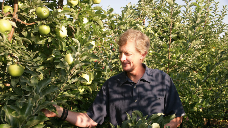 CATCH THE BUZZ – B.C. Apple Grower Aims for Billion-Dollar Harvest.