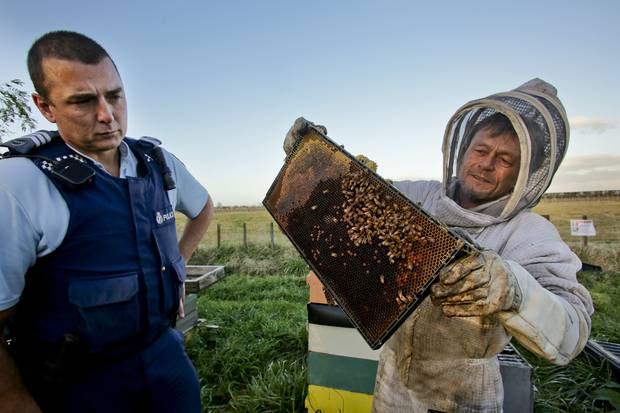CATCH THE BUZZ – NZ's Honey Industry is Booming, Which Has Led to Brazen Thefts Which Police Believe May Be The Work of Organized Crime Groups.