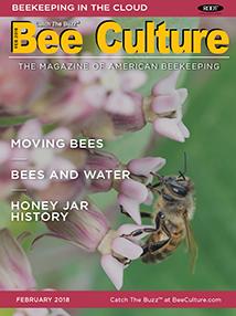 FEB 2018 Cover