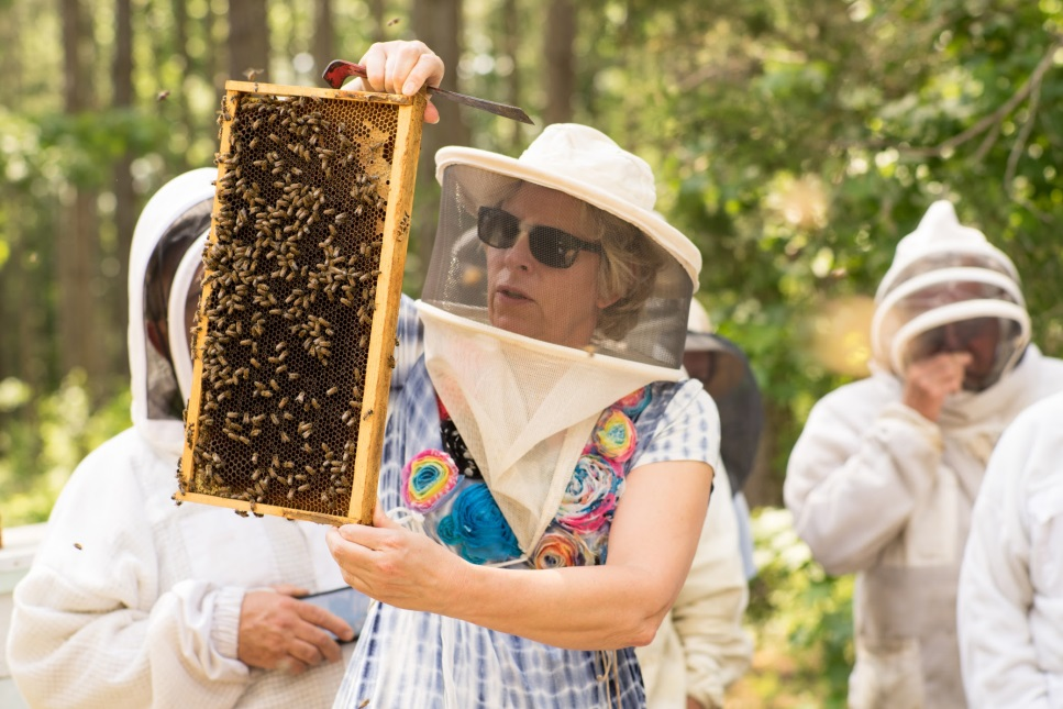 CATCH THE BUZZ – Queen Rearing Class with Jennifer Berry. Don't miss this opportunity!