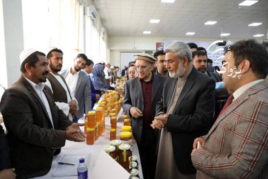 CATCH THE BUZZ – Afghanistan Has Capacity of Producing 11,000 Tons Honey a Year.