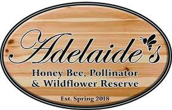 CATCH THE BUZZ – Newfoundland and Labador's First Honey Bee Reserve Opens June 1.
