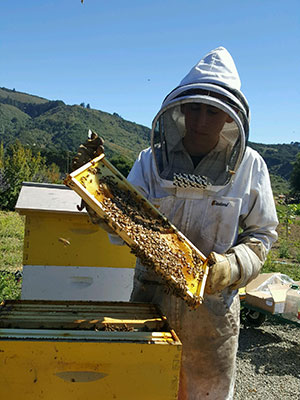 CATCH THE BUZZ – Six Reasons Why You Should Apply for the Young Beekeeper Award.