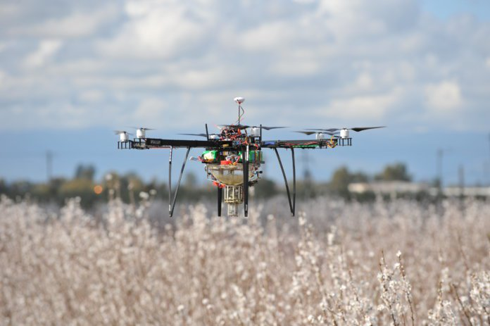 CATCH THE BUZZ – To Give Bees a Break, Farmers Pollinated an Apple Orchard Using Drones.