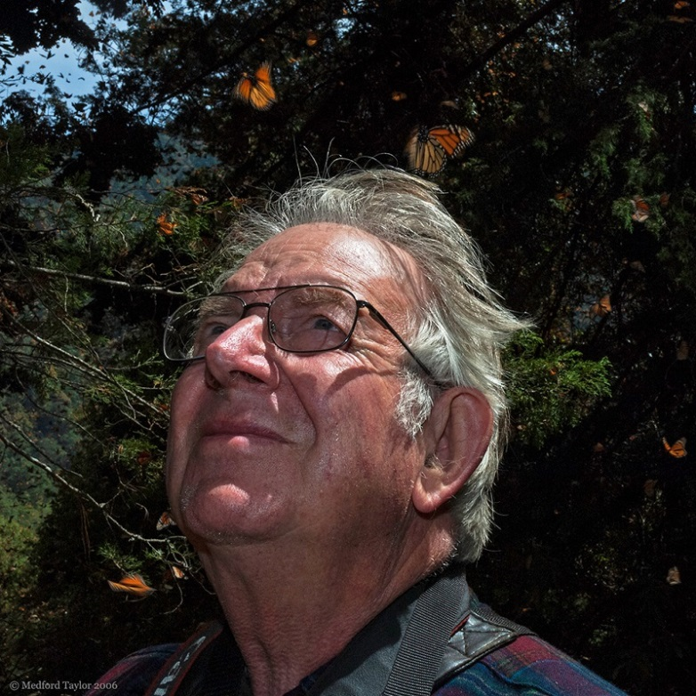 CATCH THE BUZZ – Lincoln Brower, an American Entomologist Famous for His Work To Conserve The Monarch Populations of Mexico and The US, Has Passed Away At Age 86.