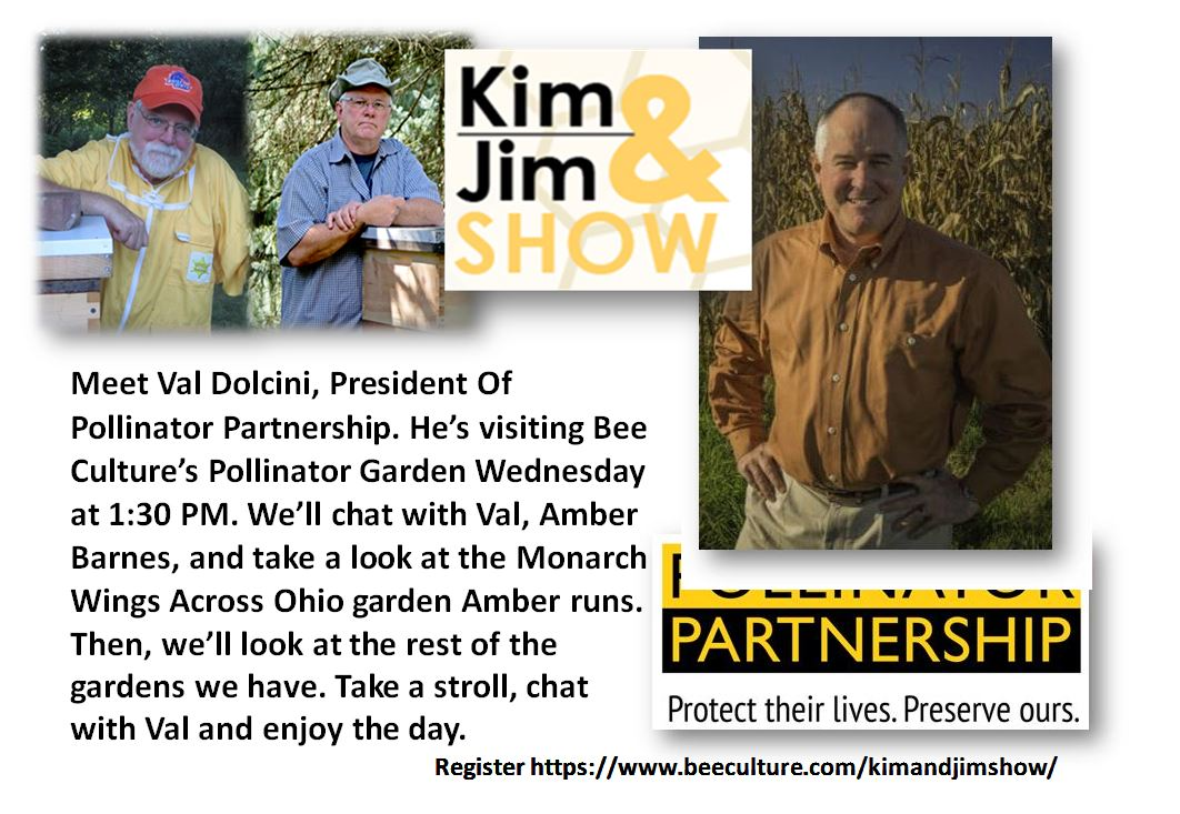 CATCH THE BUZZ – The Kim & Jim Show – Today, Wednesday 8-1-2018 @ 1:30pm