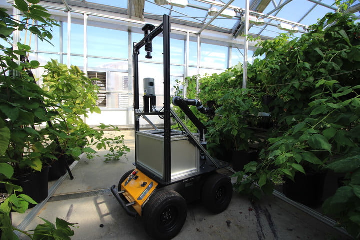CATCH THE BUZZ – Here Comes Another Pollinating Robot.