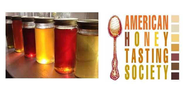 CATCH THE BUZZ: Honey Tasting – Learn Just The Basics