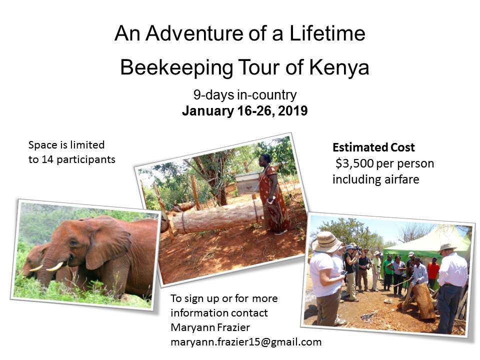 CATCH THE BUZZ – Beekeeping Tour of Kenya 2019
