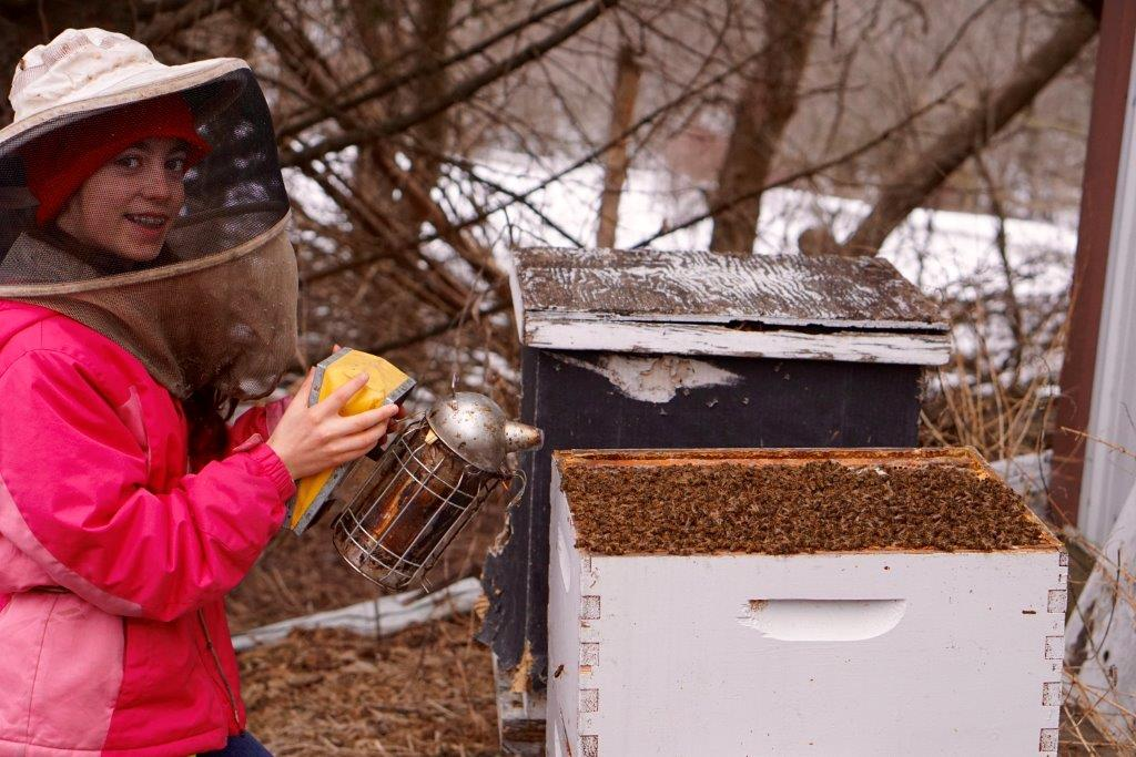 CATCH THE BUZZ – Amara Orth of Council Bluffs, Iowa, is Focused on Studying the Habitats from Which Bees Collect Propolis.