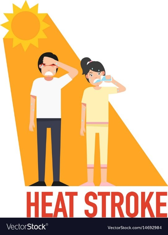 CATCH THE BUZZ –  Heat Stroke and Heat Exhaustion. Know the Symptoms, Know the Treatment.