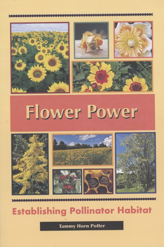 CATCH THE BUZZ – Listen to Tammy Horn Potter Talk About Her New Book Flower Power. Establishing Pollinator Habitat on www.beekeepingtodaypodcast.com