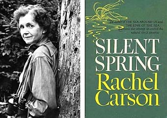 CATCH THE BUZZ – Rachel Carson had it right the first time. These pesticides kill both the birds and the bees. It's Silent Spring, Again