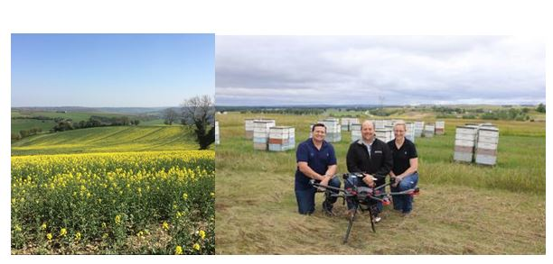 CATCH THE BUZZ – Can Plants Tell Time, and, Robots May Be Pollinators Sooner Than You Think In North Dakota.