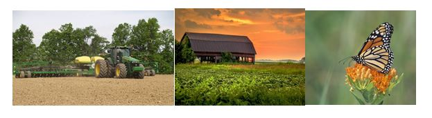 CATCH THE BUZZ – Three Today Planted Acres in US Down, Farm Bankruptcies in US Up, and Ohio Butterflies Declining. Is There a Connection?