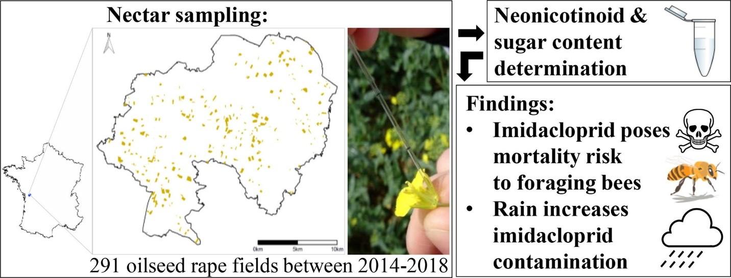 CATCH THE BUZZ- Pesticides- Cannot Eliminate Short Term Hazards
