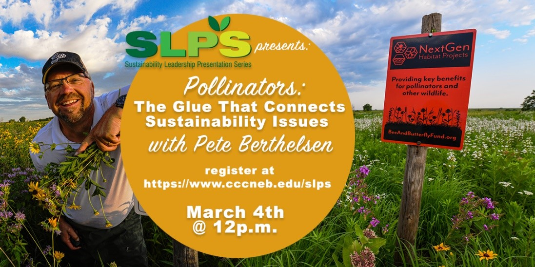 CATCH THE BUZZ – Pollinators: the Glue that Connects, Webinar March 4th
