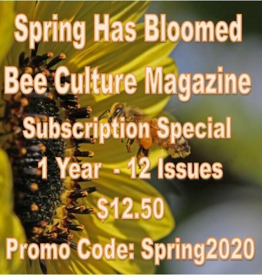 CATCH THE BUZZ – What an AMAZING Deal! – Bee Culture 1 Year Subscription Special