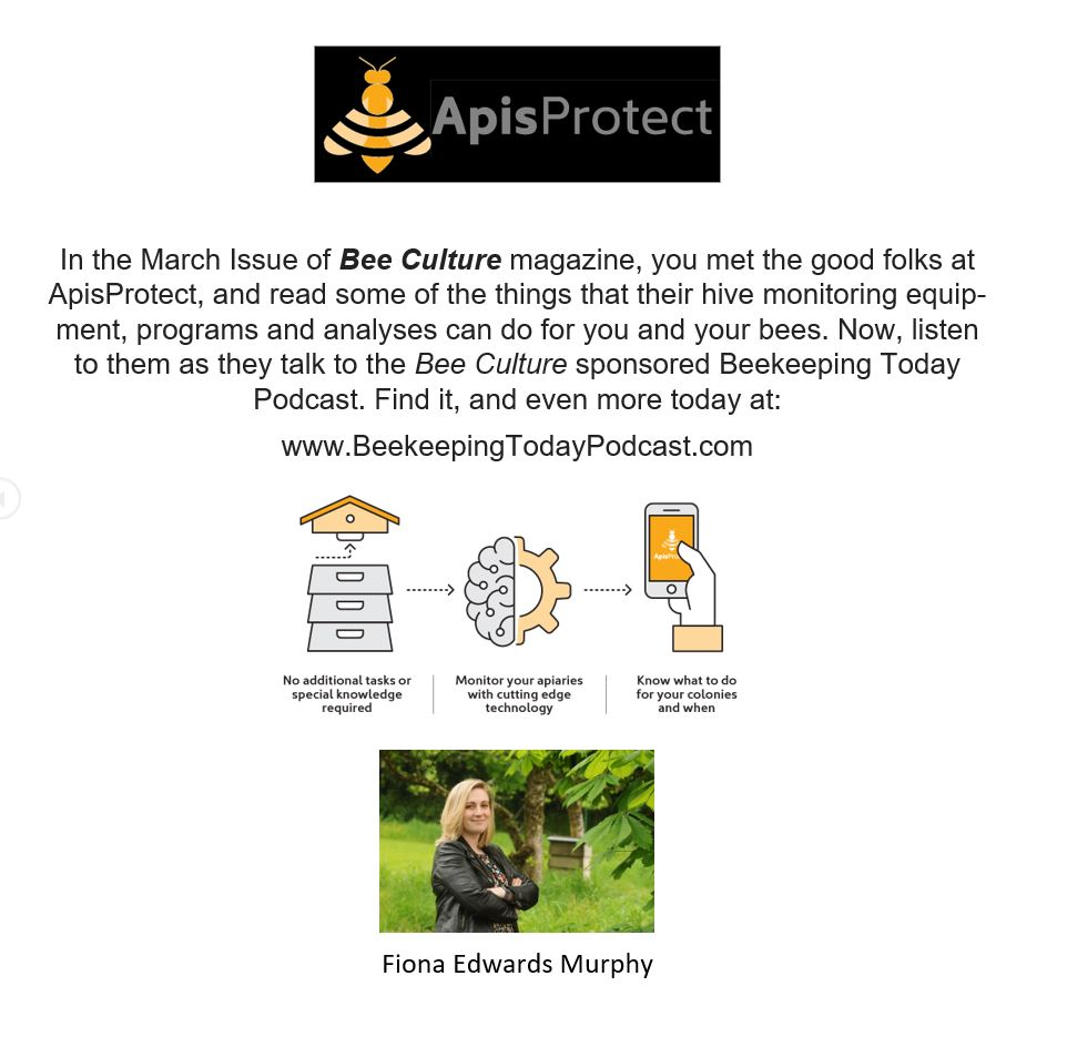 CATCH THE BUZZ – Beekeeping Today Podcast