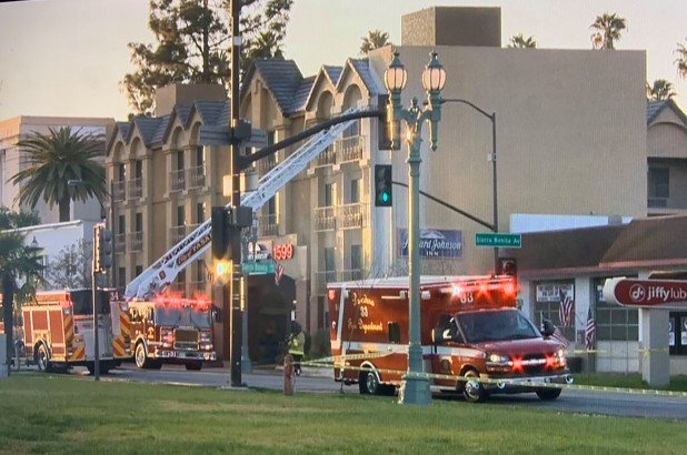 CATCH THE BUZZ – Swarm of Killer Bees Attack First Responders