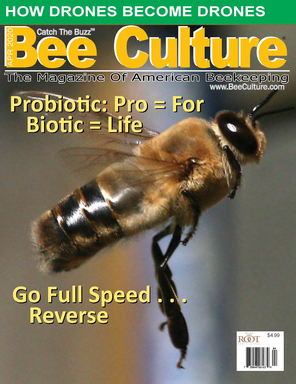 APRIL 2020 Cover