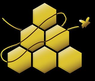 CATCH THE BUZZ – Honey Fraud