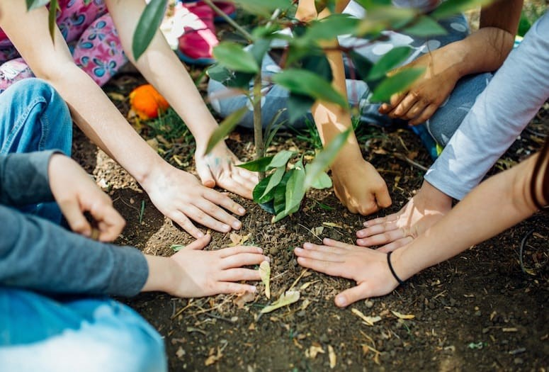 CATCH THE BUZZ – Celebrate Earth Day at Home