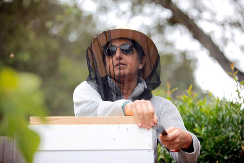 CATCH THE BUZZ- Blind Beekeeper Relies on Sound