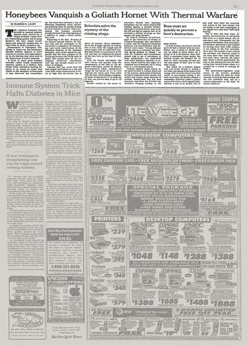 CATCH THE BUZZ- Japanese Honey Bees Kill Murder Hornets…NYTimes 1995