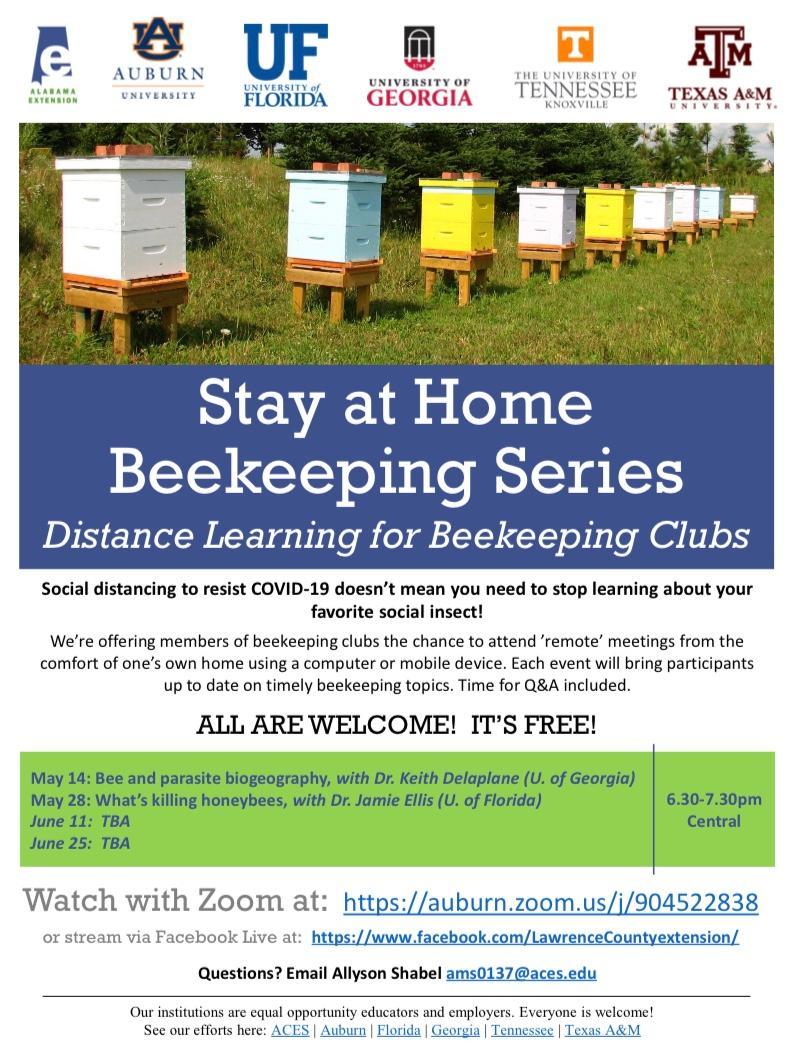 CATCH THE BUZZ – Stay at Home Beekeeping Series