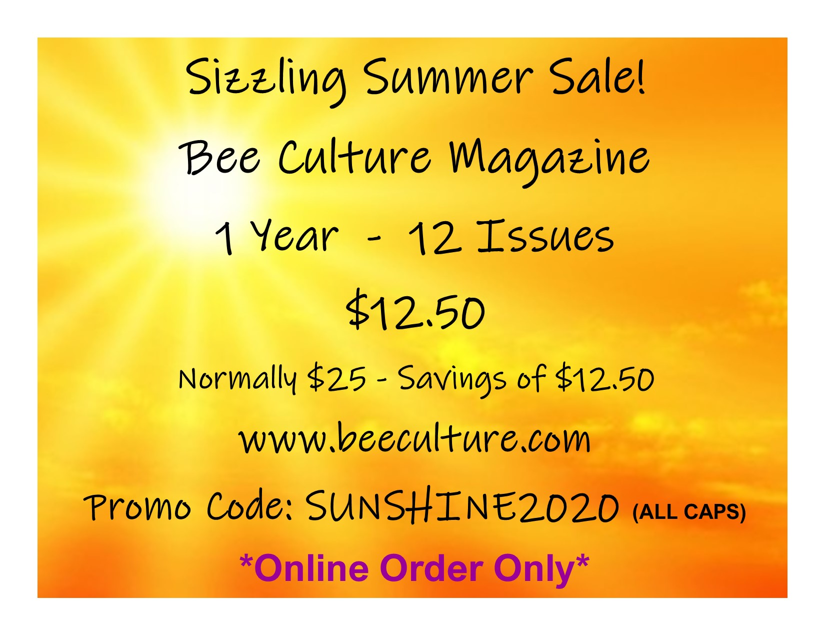 CATCH THE BUZZ – Summer Subscription Special