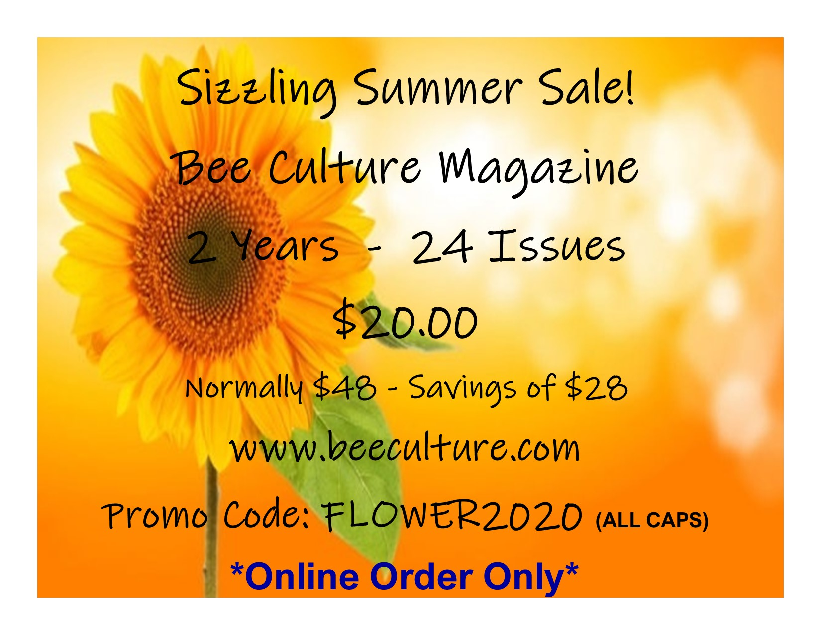 CATCH THE BUZZ – Summer Subscription Sale