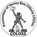 CATCH THE BUZZ- COLOSS Funding