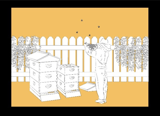 CATCH THE BUZZ – Urban Beekeeping is for You!
