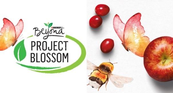 CATCH THE BUZZ – Help Pollinators Flourish, 5 Ways