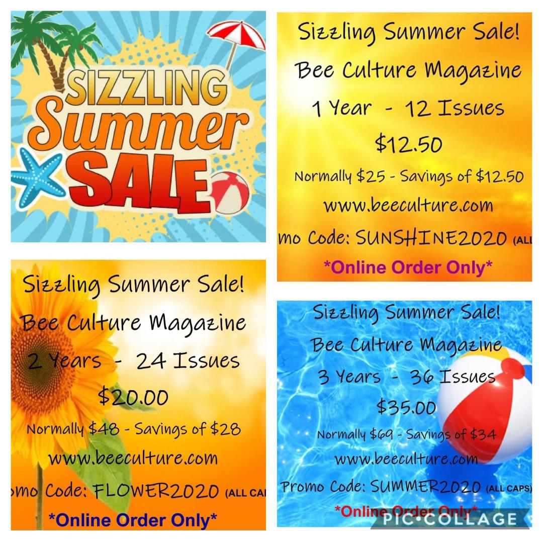 CATCH THE BUZZ – Sizzling Summer Subscription Sale – Expires TODAY!!!