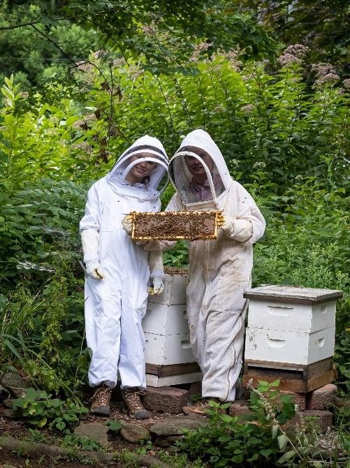 CATCH THE BUZZ- Ambassadors for Pollinators
