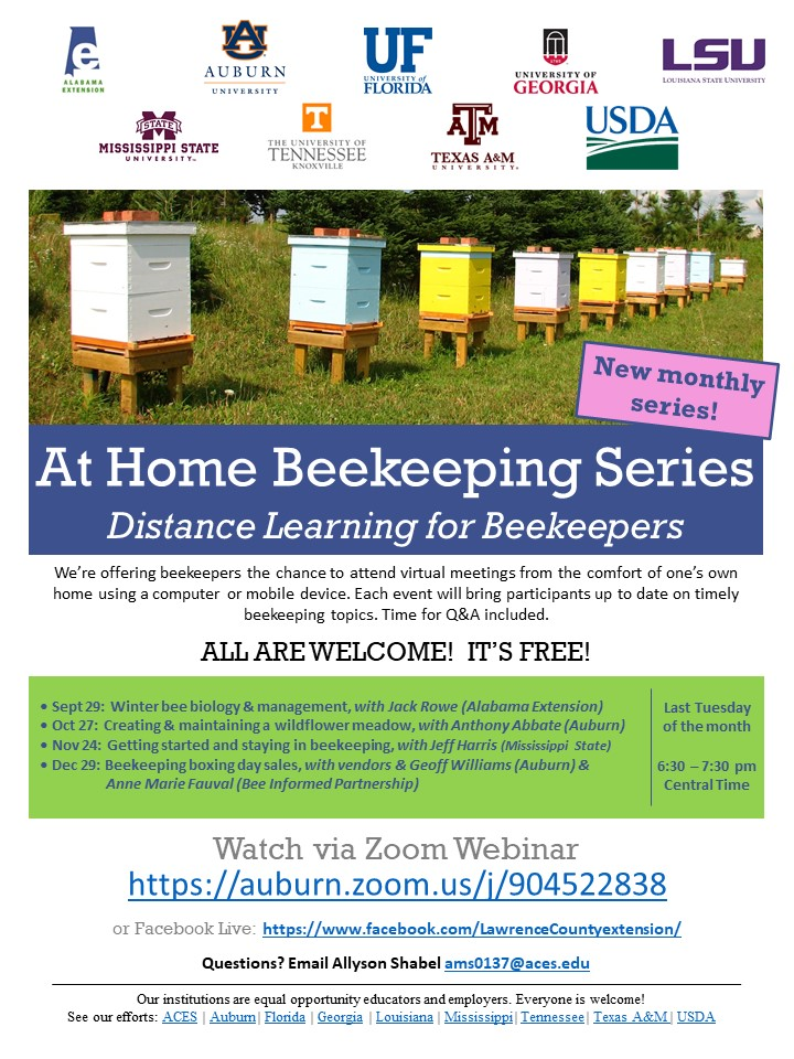 CATCH THE BUZZ – At Home Beekeeping Series – Distance Learning for Beekeepers