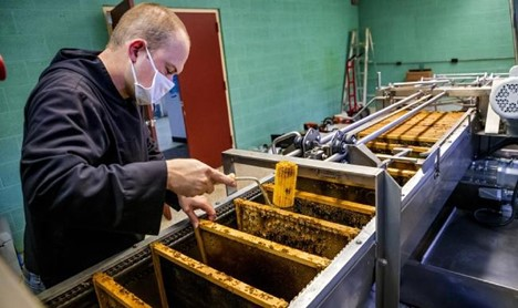 CATCH THE BUZZ – Monks at St. Gregory's Abbey Prepare for Big Honey Harvest