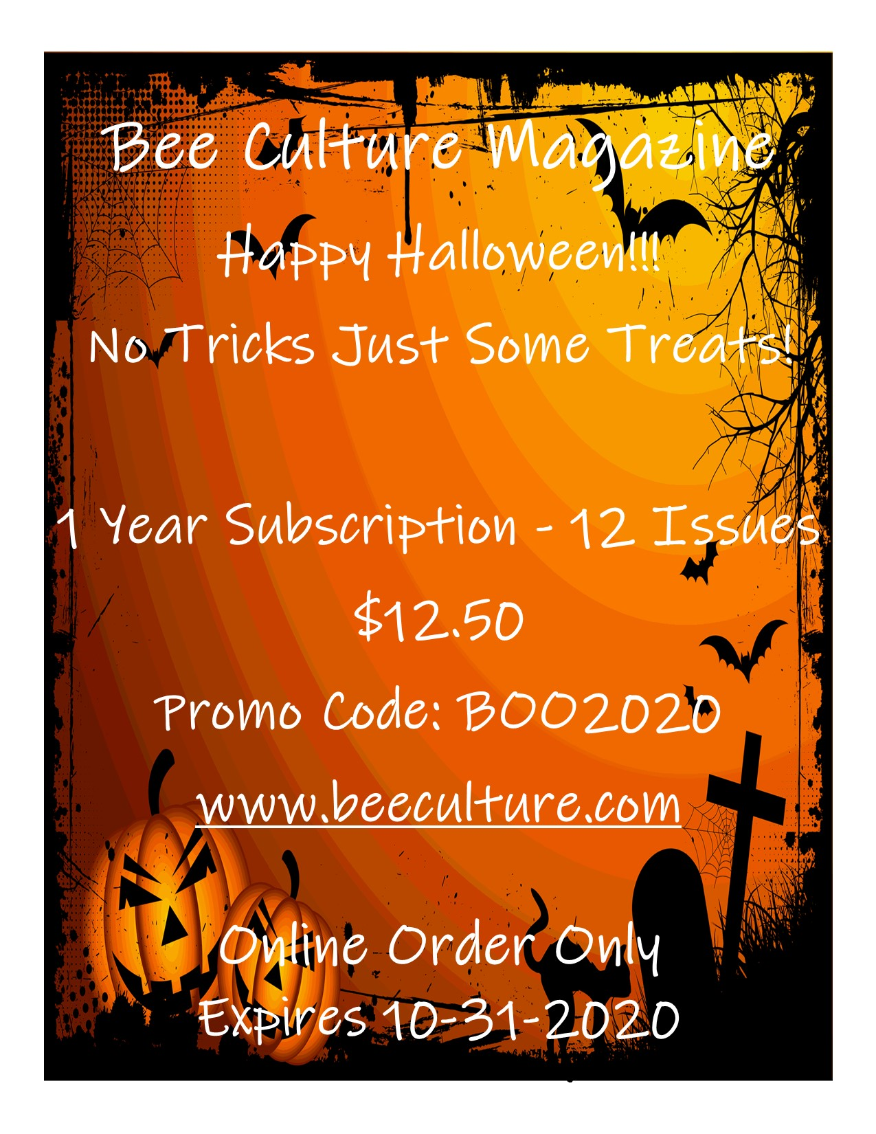 CATCH THE BUZZ – Happy Halloween!!!