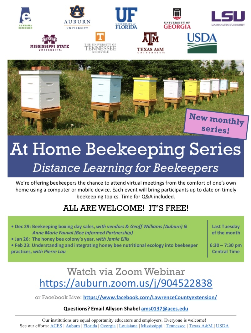 CATCH THE BUZZ – Beekeeping at Home Series, Tuesday Dec. 29th!
