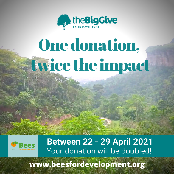 CATCH THE BUZZ- Donate to Train People in Ghana