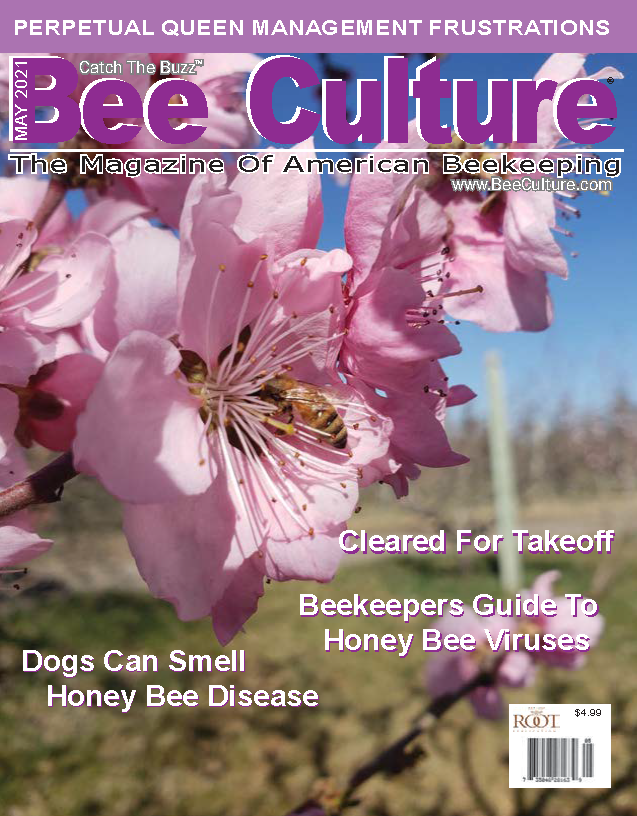May 2021 Cover