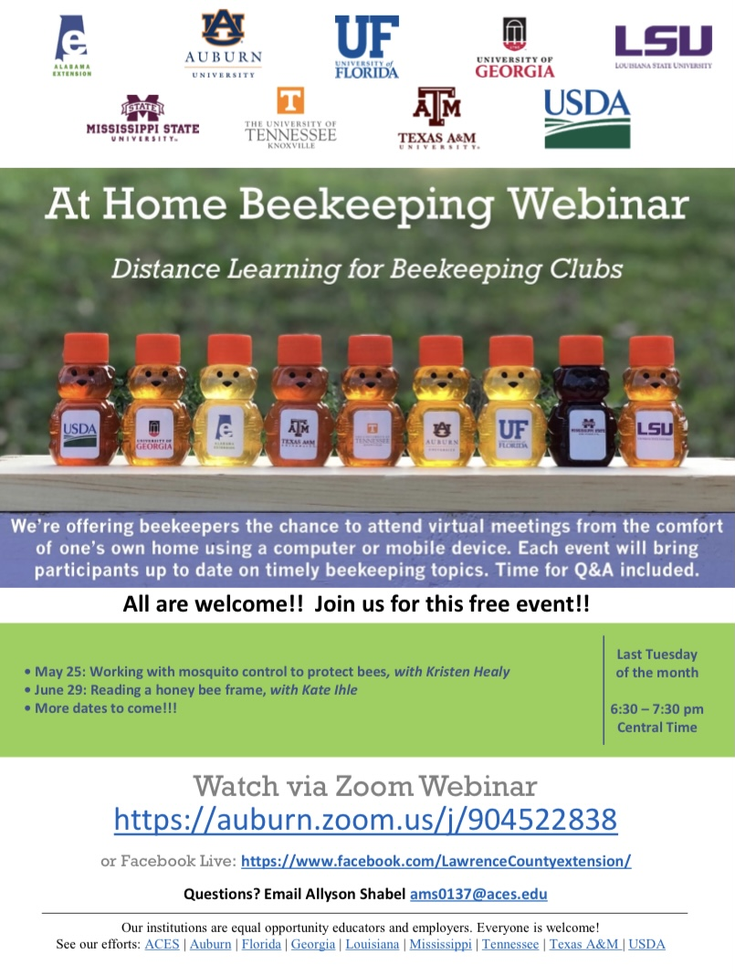 CATCH THE BUZZ – At Home Beekeeping Series