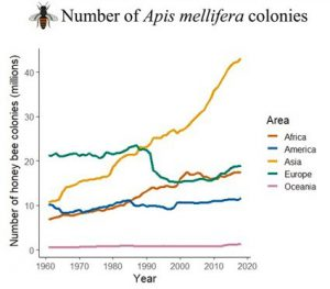Honey Bee Increase